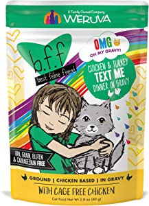 Weruva B.F.F. OMG - Best Feline Friend Oh My Gravy! Grain-Free Natural Wet Cat Food Pouches, Chicken Recipes in Gravy