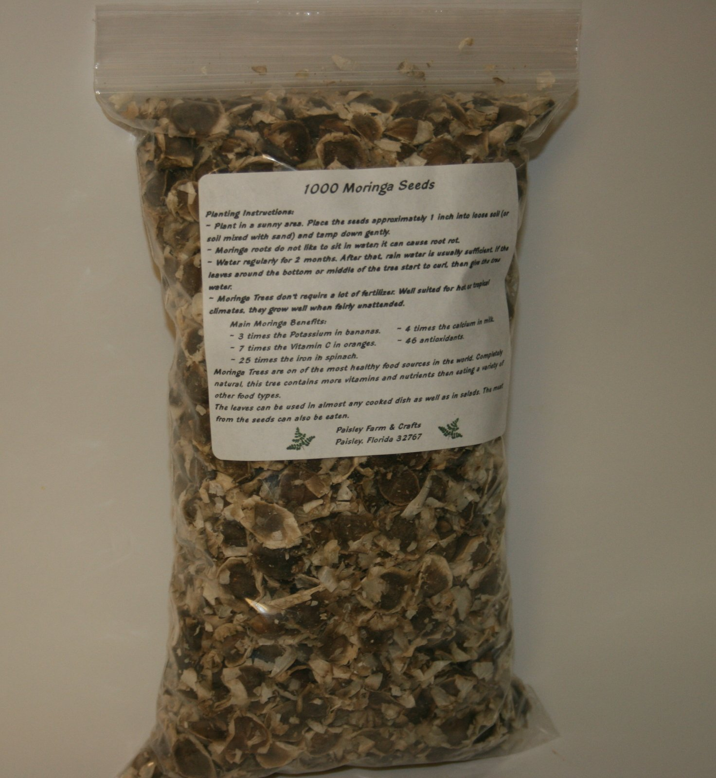 10,000 Moringa Oleifera Seeds - US Customs Cleared - Distributed by Paisley Farm, FL by Paisley Farm and Crafts