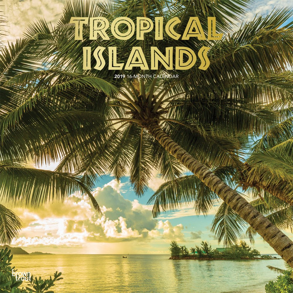 Tropical Islands 2019 12 x 12 Inch Monthly Square Wall Calendar with Foil Stamped Cover, Scenic Travel Tropical Photography (Multilingual Edition) (Multilingual) Calendar – Wall Calendar, June 1, 2018 Inc. BrownTrout Publishers 1975401115 General Reference