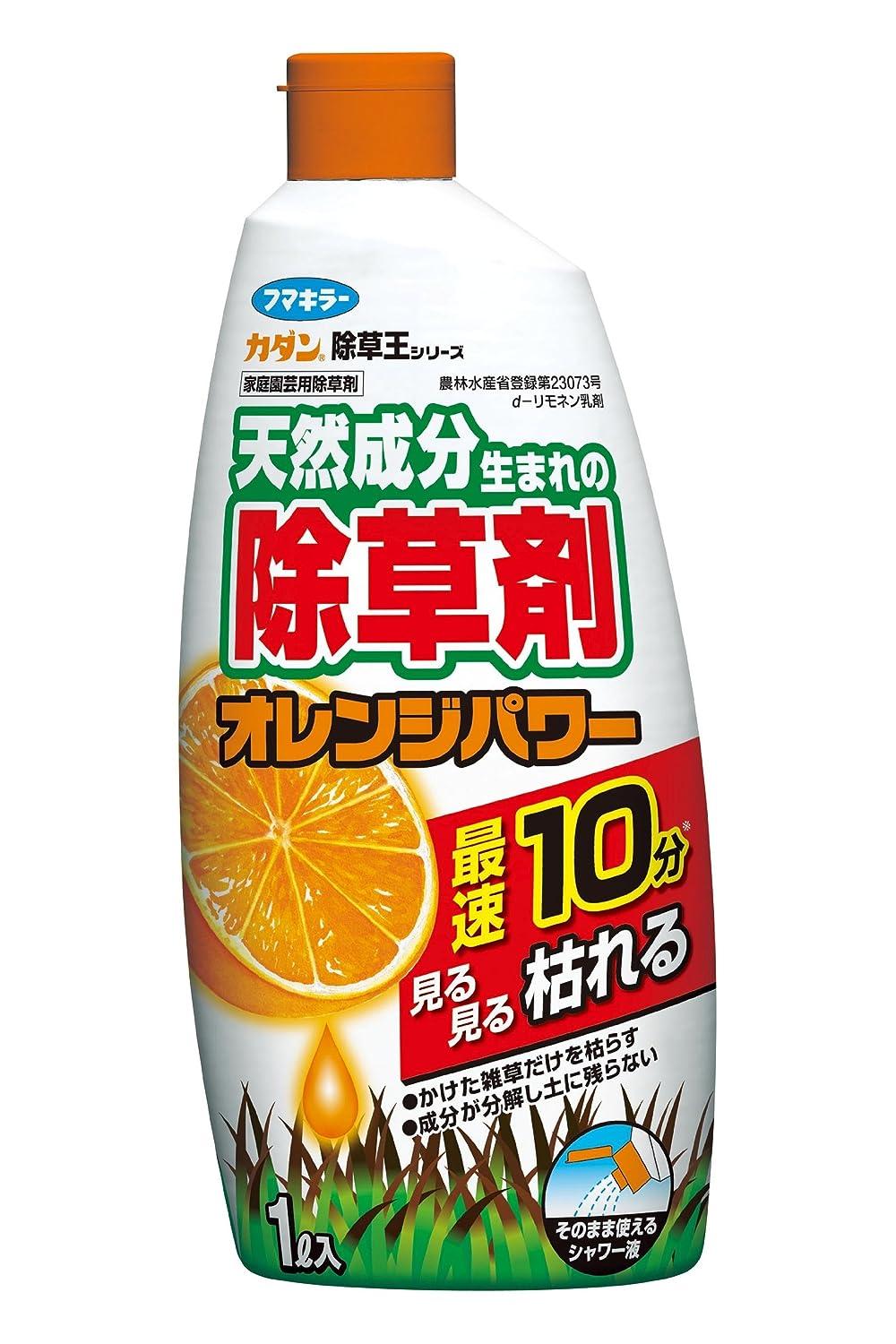 ⑦ オレンジパワー