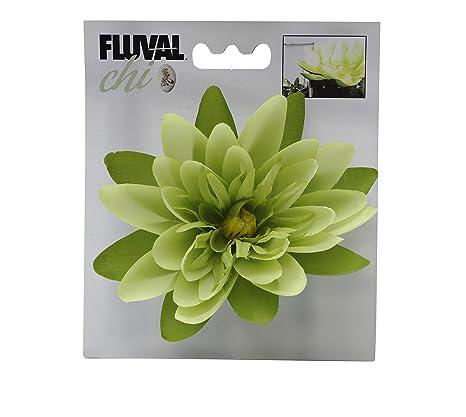 Fluval Maceta decorativa de boj y hierba de gran tamaño, marca