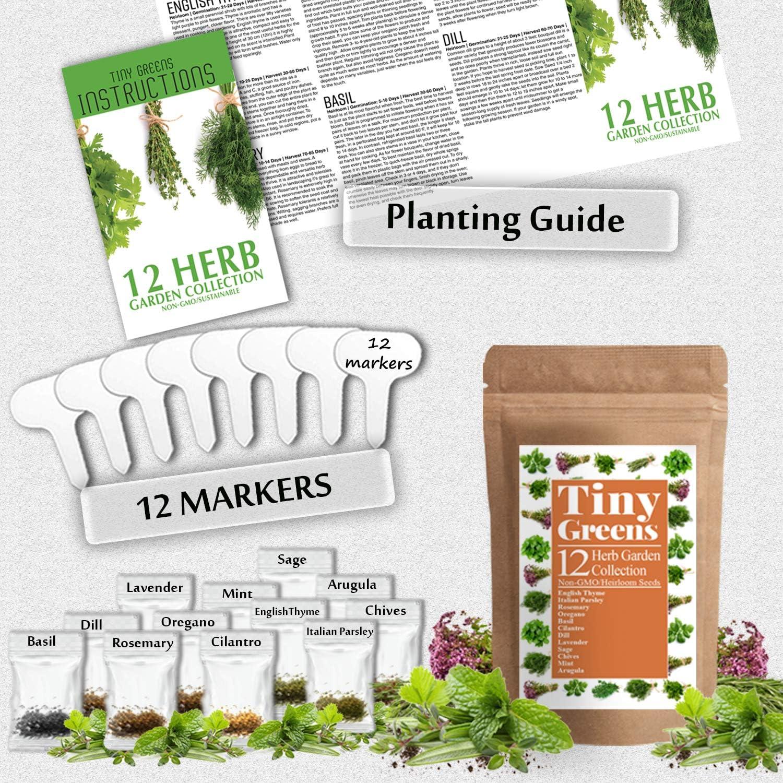 Amazon.com: Herb Seeds Vault [12 Variety - 3600 Seeds ...