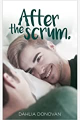 After the Scrum Kindle Edition