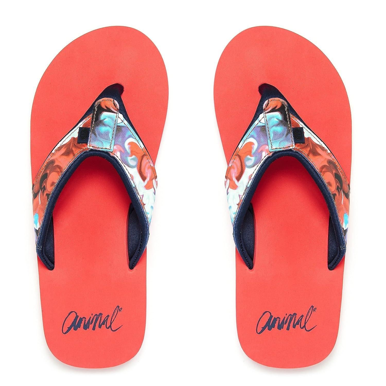 6d77291019b45 Animal Womens Swish Upper AOP  Amazon.co.uk  Shoes   Bags