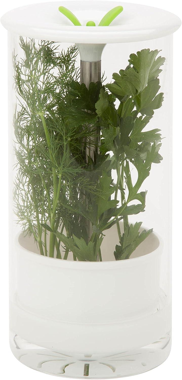 Glass fresh herb preserver