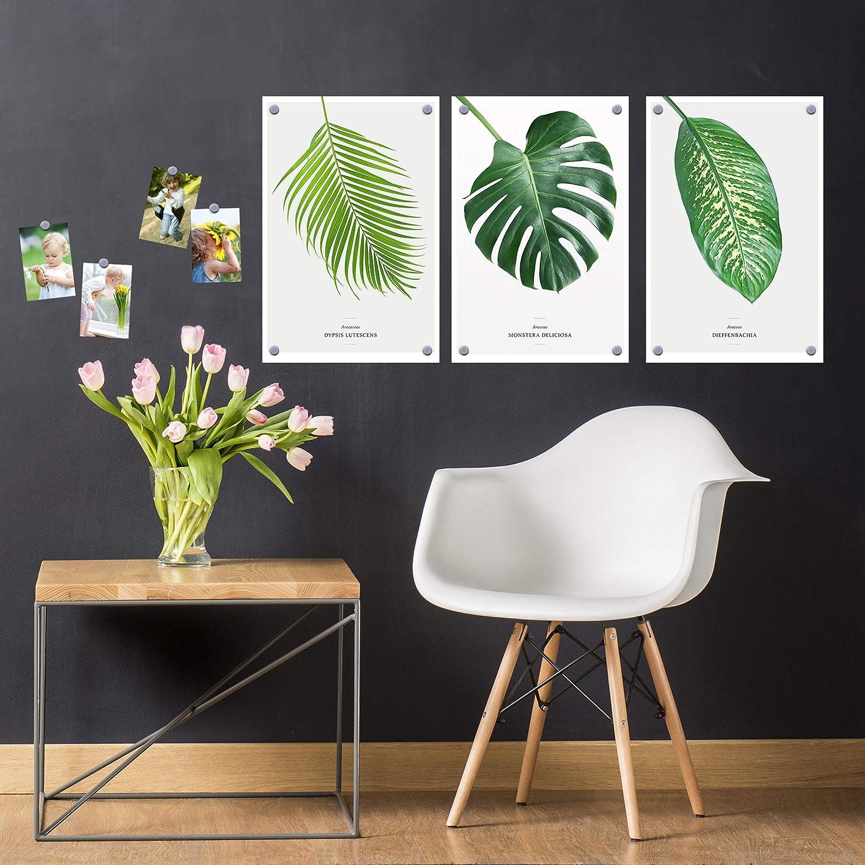 Bilderwelten Magnetfolie - schwarzboard schwarzboard schwarzboard selbstklebend - Wohnzimmer 50 x 50 cm B07NDH9P53 | Einfach zu bedienen  519ca8