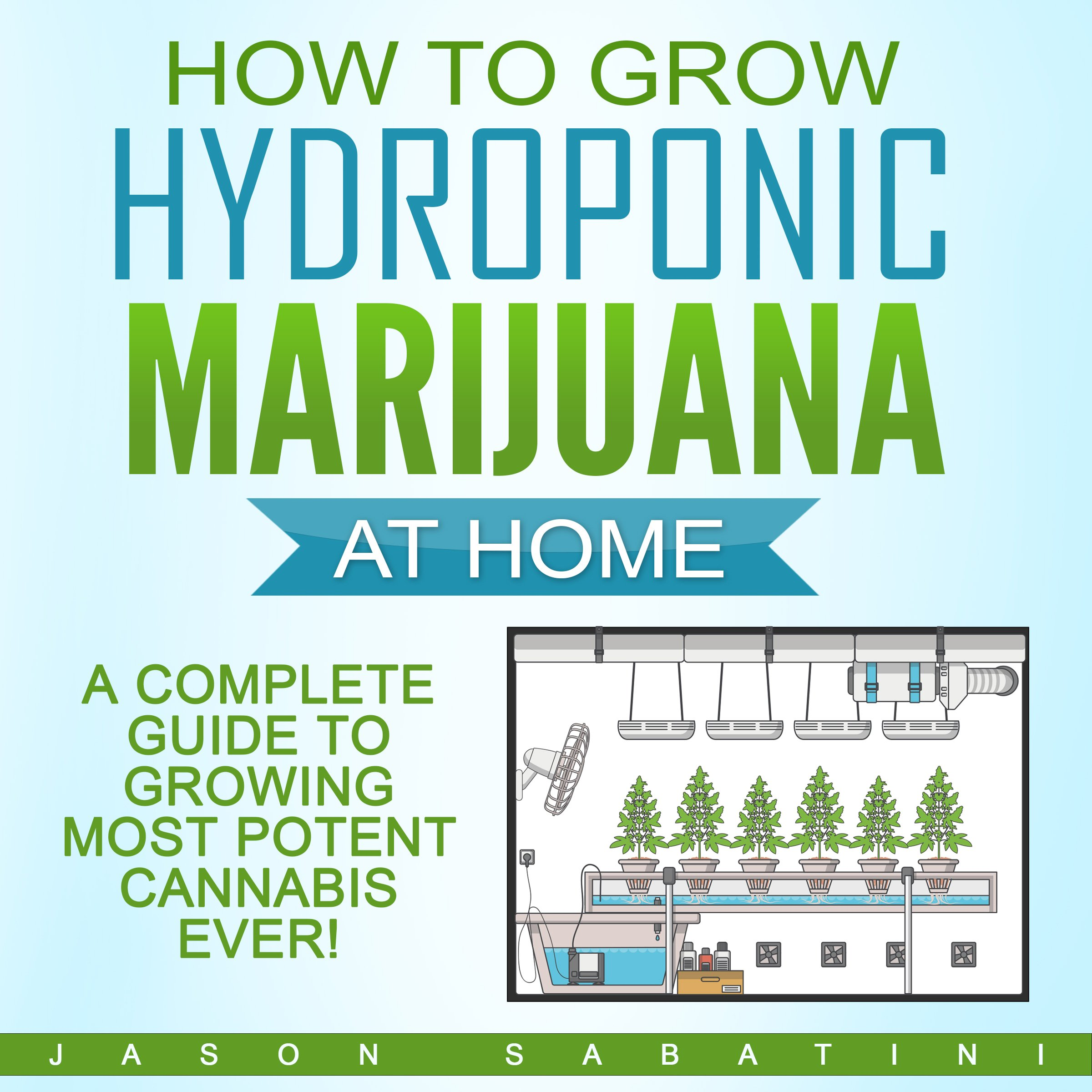 How To Grow Hydroponic Marijuana At Home  A Complete Guide To Growing Most Potent Cannabis Ever