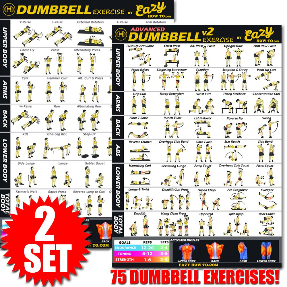 Eazy How To Dumbbell Exercise Workout Poster BIG 28 X 20'' Train Endurance, Tone, Build Strength & Muscle Home Gym Chart - 2 Pack by Eazy How To