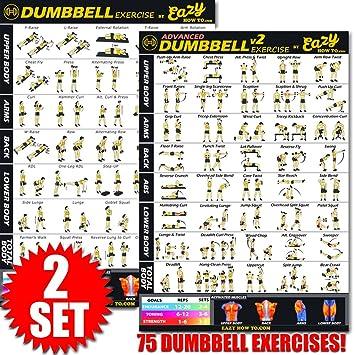 Mancuernas ejercicio entrenamiento Banner Póster grande 51 x 73 cm tren Endurance, tono, construir