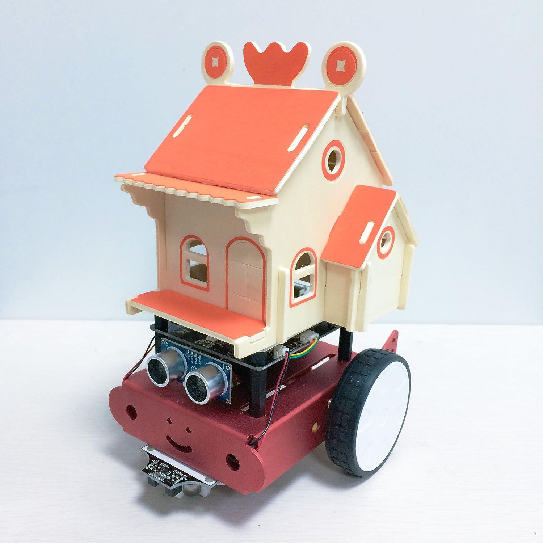 iBot Kit de Robot programable niños con aplicación y tutoriales de vídeo para Principiantes para Aprender a codificar – Stem Aprendizaje Educativo Robotics Kit por House Edition, Rosado: Amazon.es: Hogar