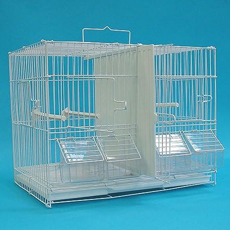 YML Canary servilletas de cría Jaula de pájaros: Amazon.es ...