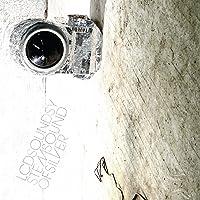 Sound of Silver (Vinyl)[Importado]