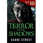 Terror in the Shadows Vol. 16: Horror Short Stories Collection with Scary Ghosts, Paranormal & Supernatural Monsters