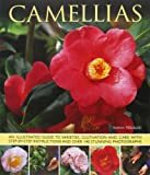 Camellias: An Illustrated Guide to Varieties, Cultivation and Care, With Step-by-Step Instructions and Over 140 Stunning Photographs