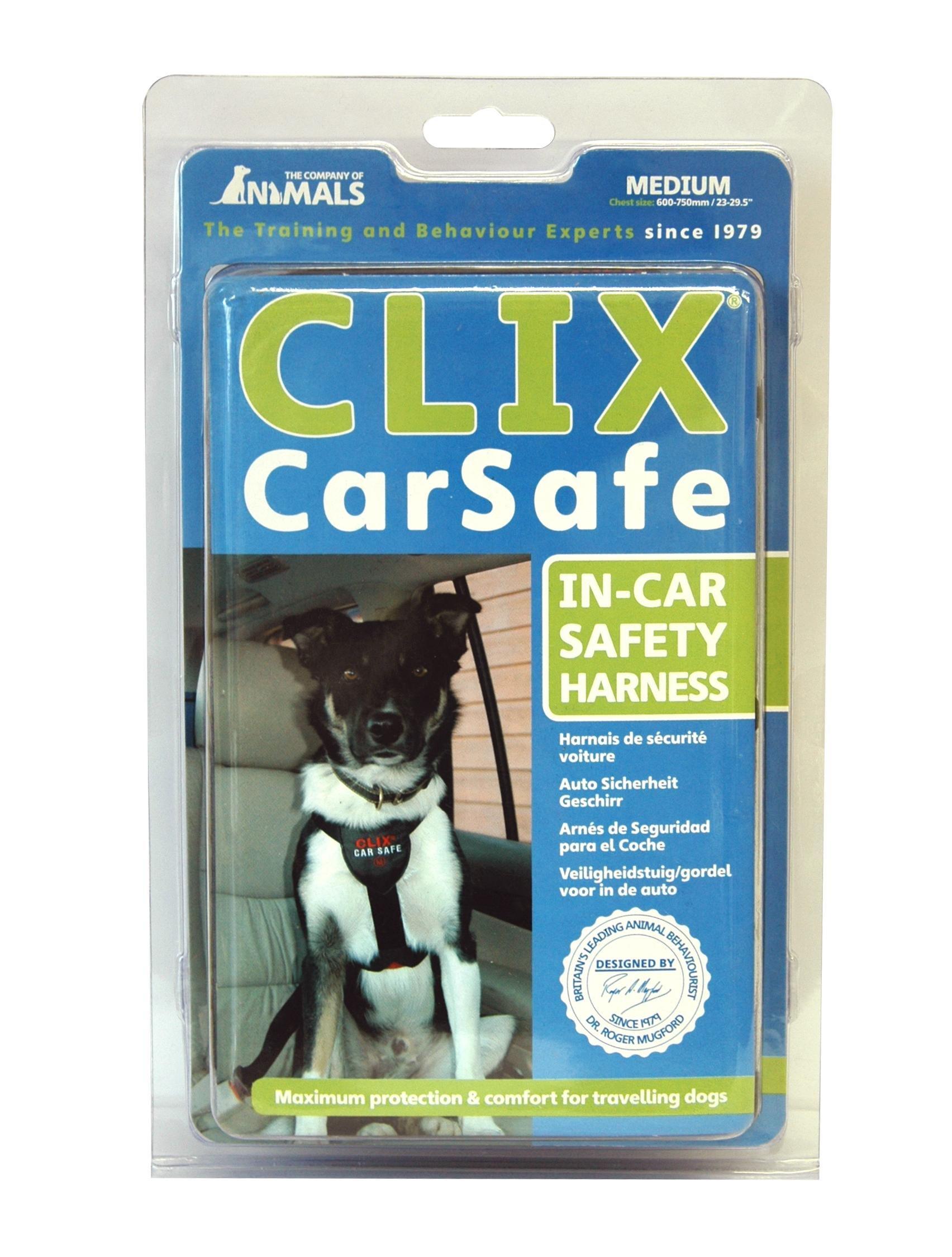 COA CarSafe, Medium by The Company of Animals