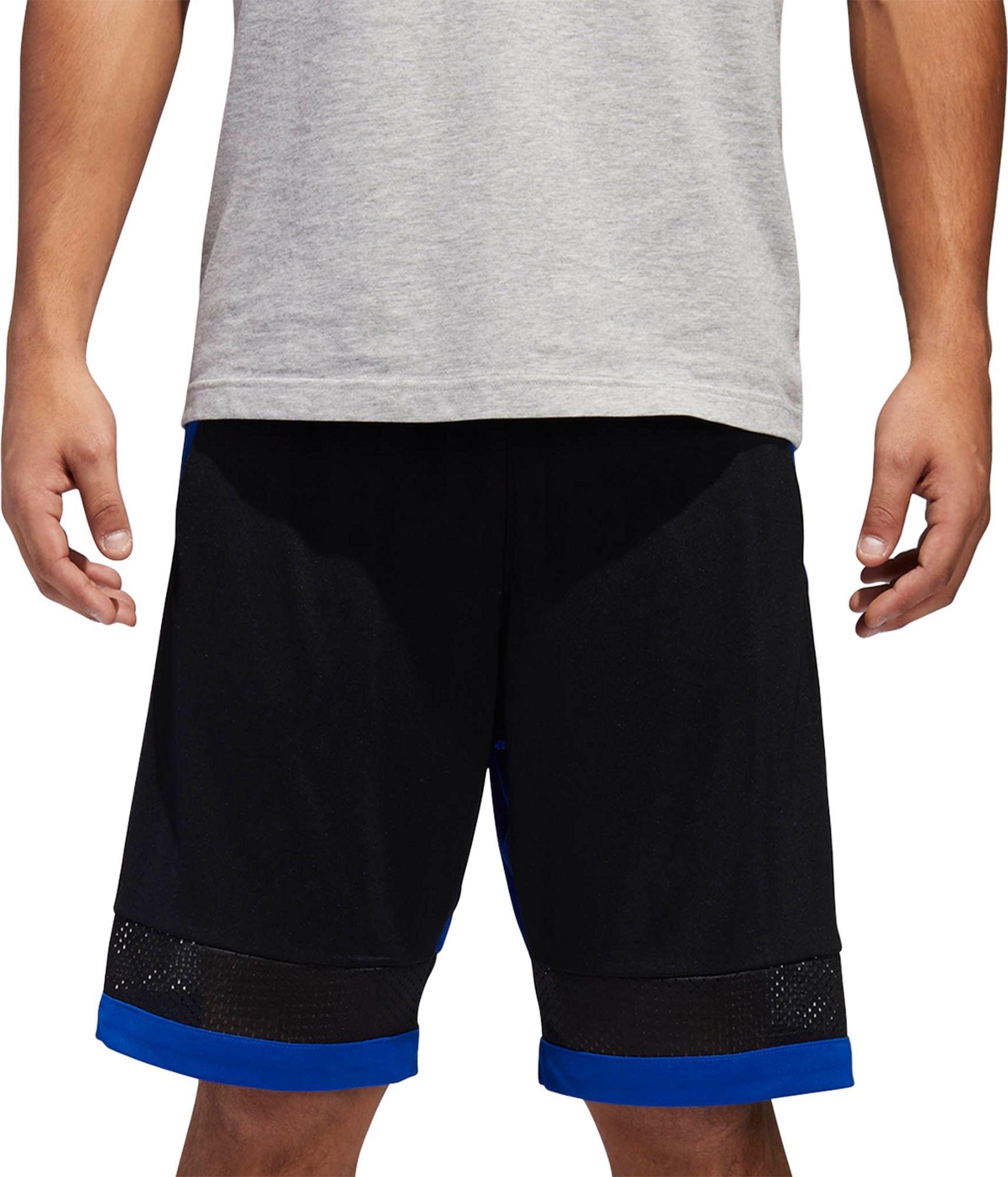 adidas Mens Pro Bounce Basketball Shorts - Black/Coll Royal, Small
