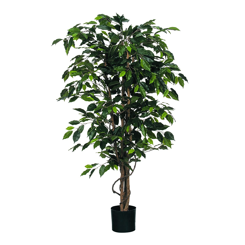 MICA Decorations Ficus Benjamin im Kunststofftopf Kunstpflanze, Polyester, grün, 85 x 85 x 150 cm, 2-Einheiten