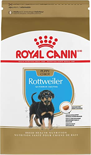 Royal Canin Breed Health Nutrition Rottweiler Puppy Dry Food