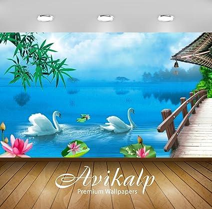 Avikalp Exclusive Vinyl Beautiful Scenery Swan Lake Full HD 3D Wallpaper,  4x3ft (Multicolour, Awi2243)