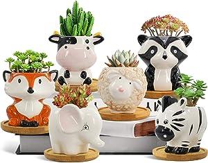 Succulent Pots,Garden Elves Animal Ceramic Succulent Planters Set of 6,Mini Cactus Pots 2.5 Inch with 6 bamboo tray and Drainage,Garden bonsai pots Decoration Small Flower Pots