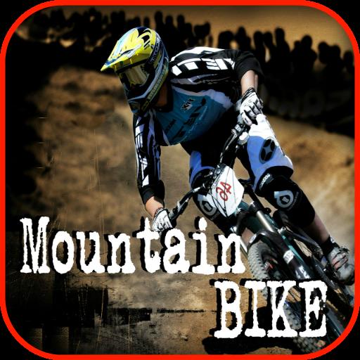 Best Dirt Bike - 9