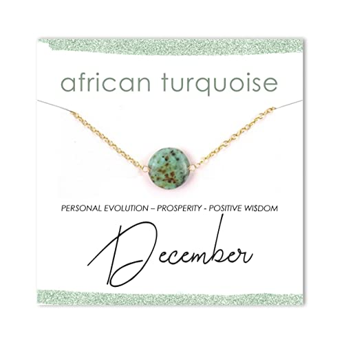 8f48229e0312d Amazon.com: African Turquoise Coin Gemstone Necklace/December ...