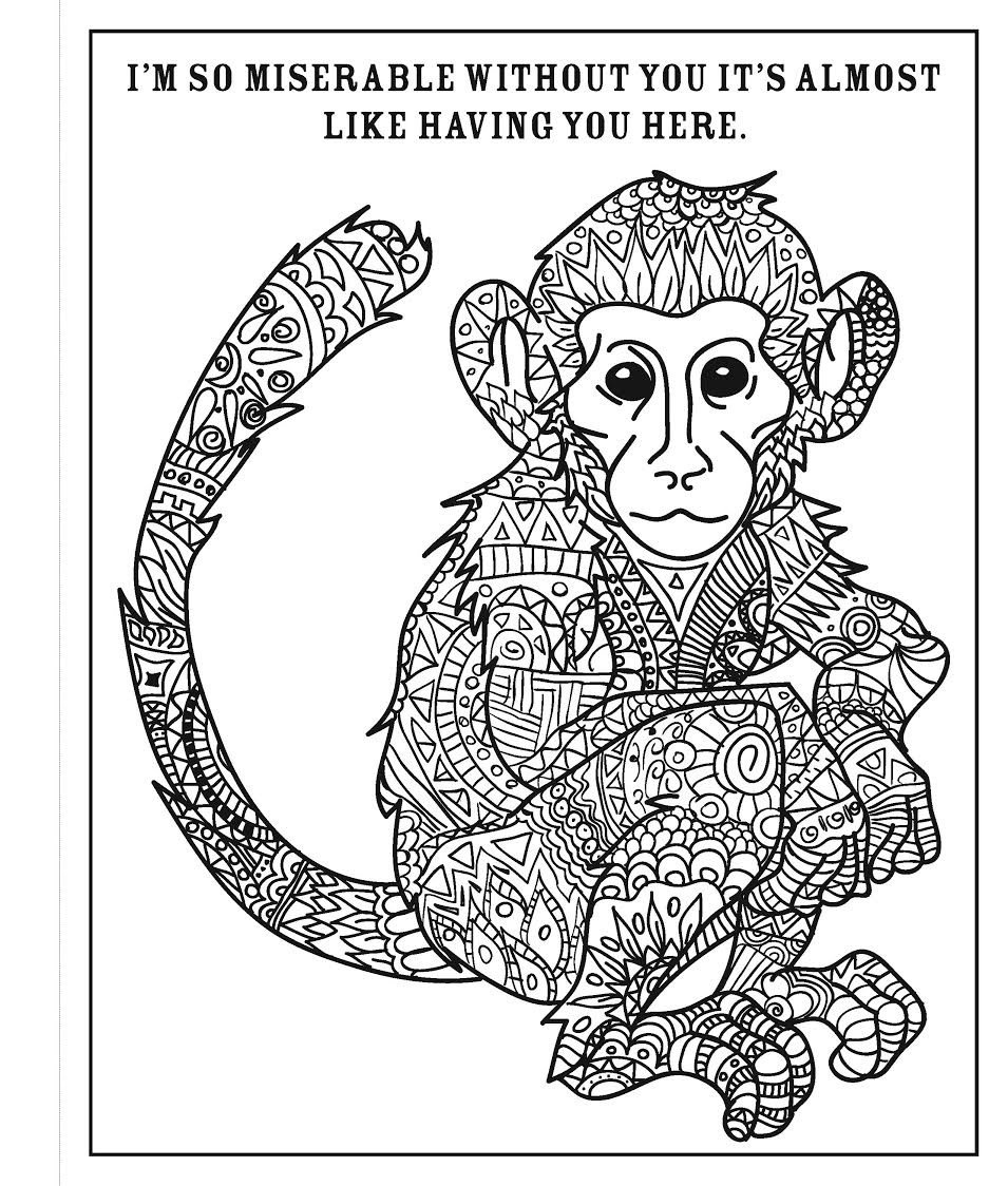 Amazon.com: A Snarky Adult Colouring Book: I Run on Coffee ... | 1124x955