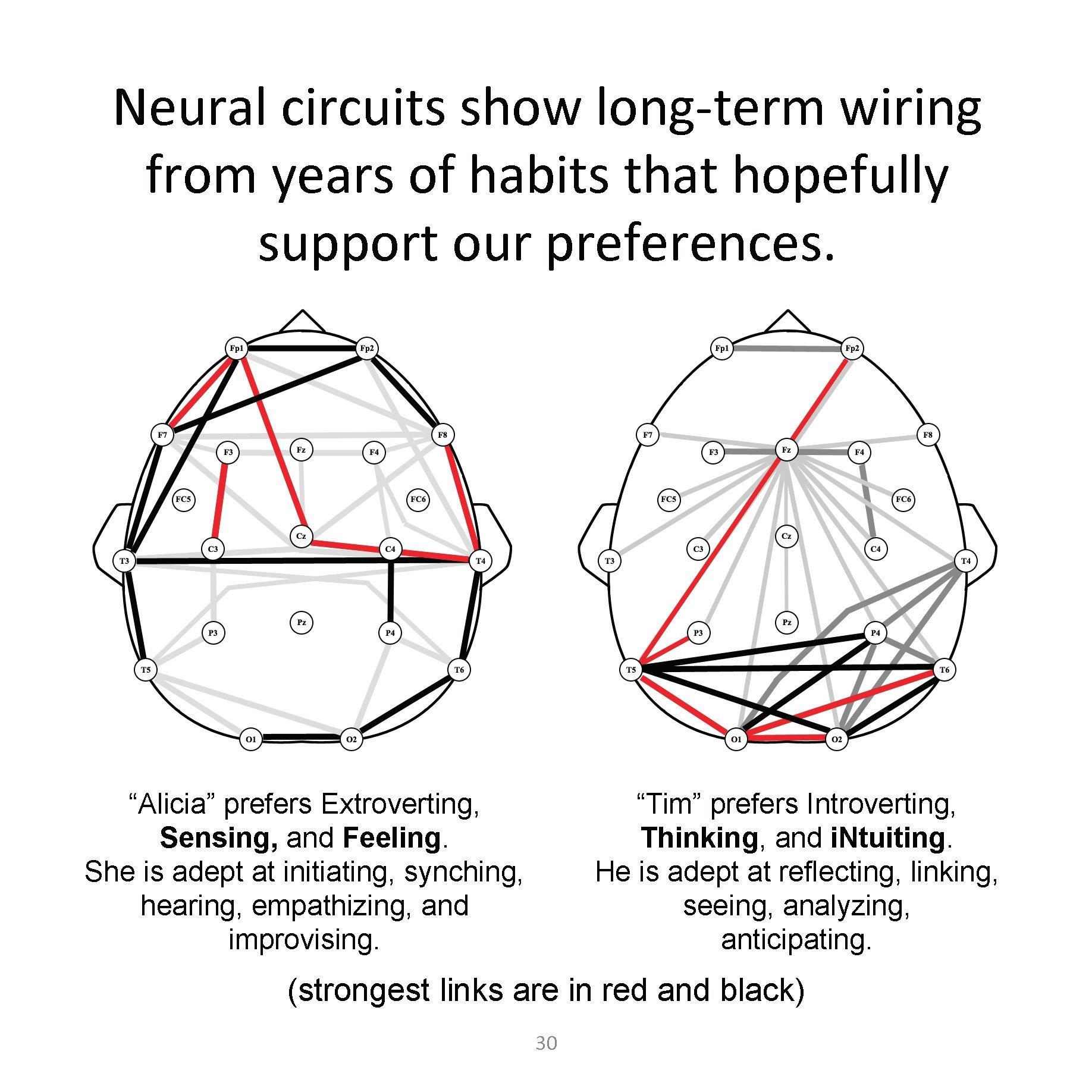 Our Brains In Color Dario Nardi 9780988523586 Books Naomi Wiring Diagram