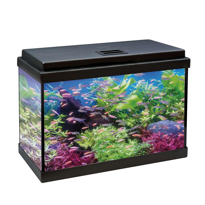 ICA kdi50 Kit Aqua-LED 50 con Filtro Interno