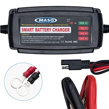 MASO - Cargador de batería para coche 2/4/8A: Amazon.es ...