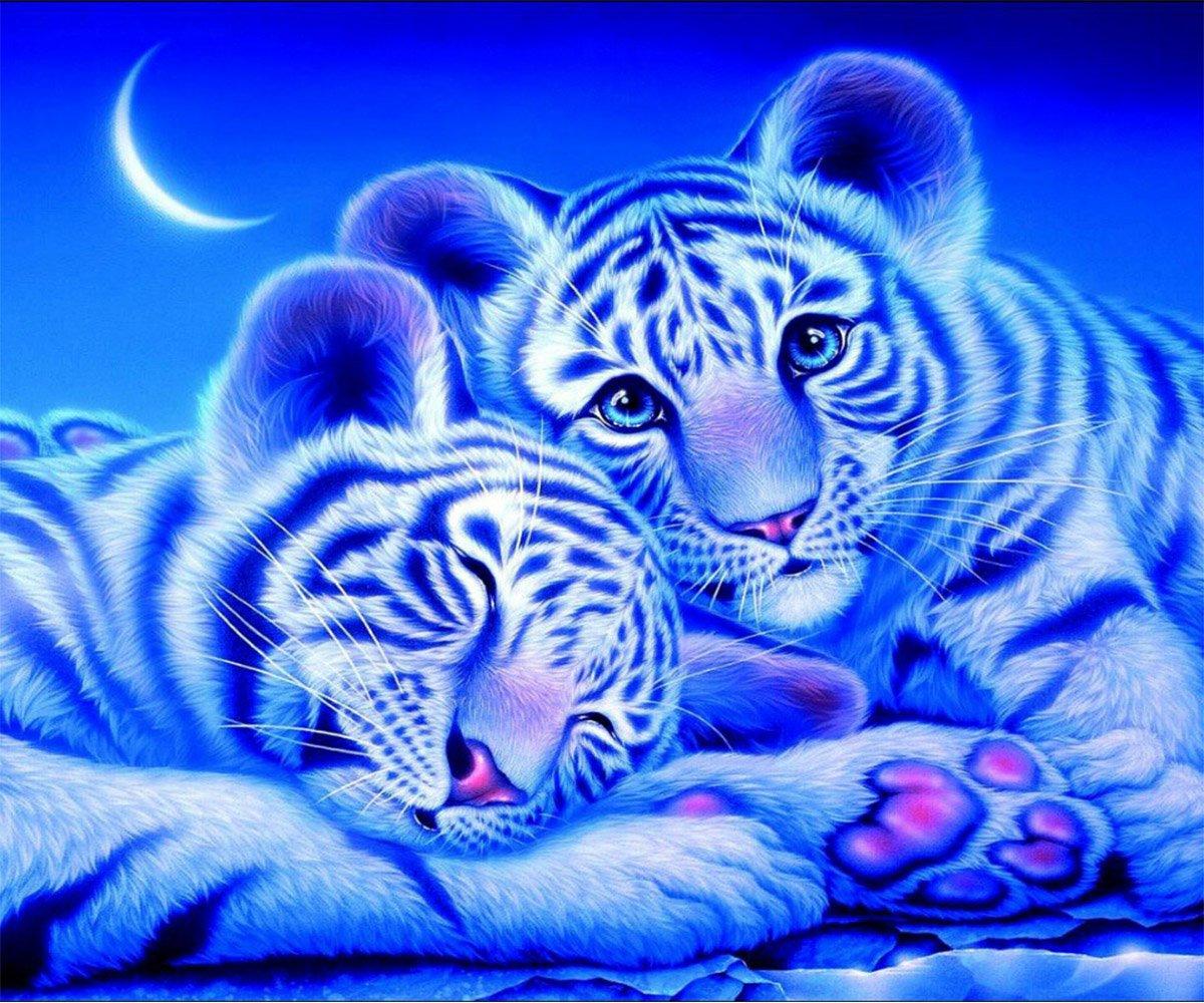 5D Pintura por Diamantes (5360) tigres