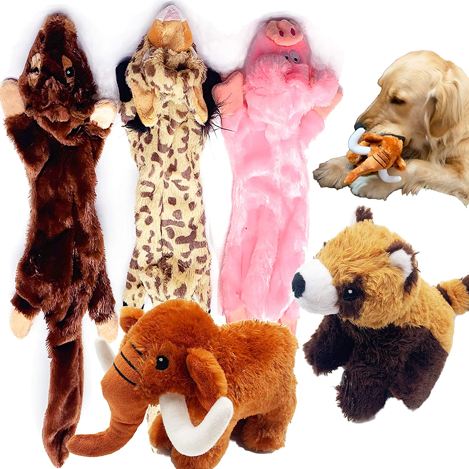Jalousie 5 Pack Dog Squeaky Toys Three no Stuffing Toy and Two Plush with Stuffing for Small Medium Large Dog Pets New