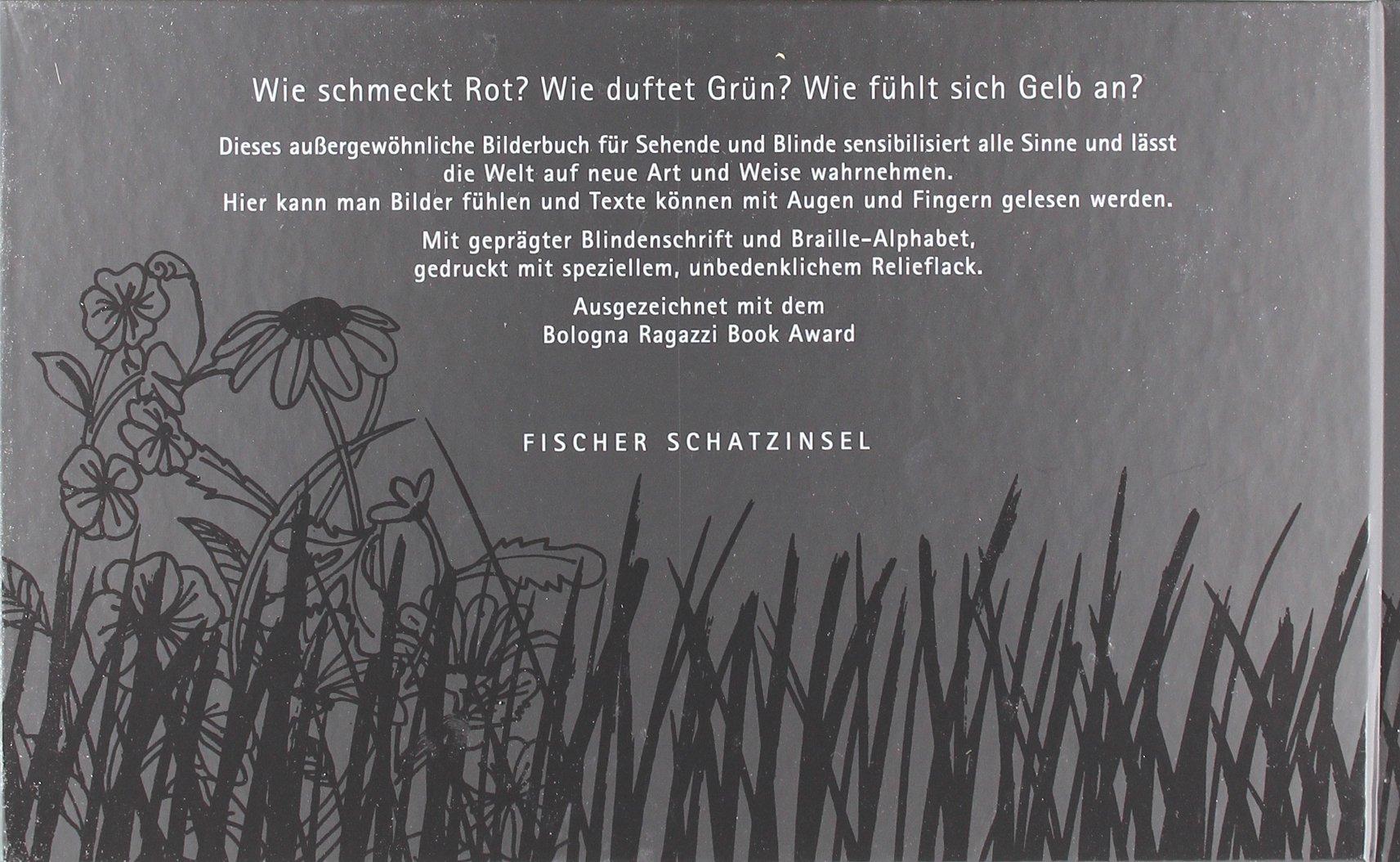 Das schwarze Buch der Farben: Amazon.de: Menena Cottin, Rosana ...