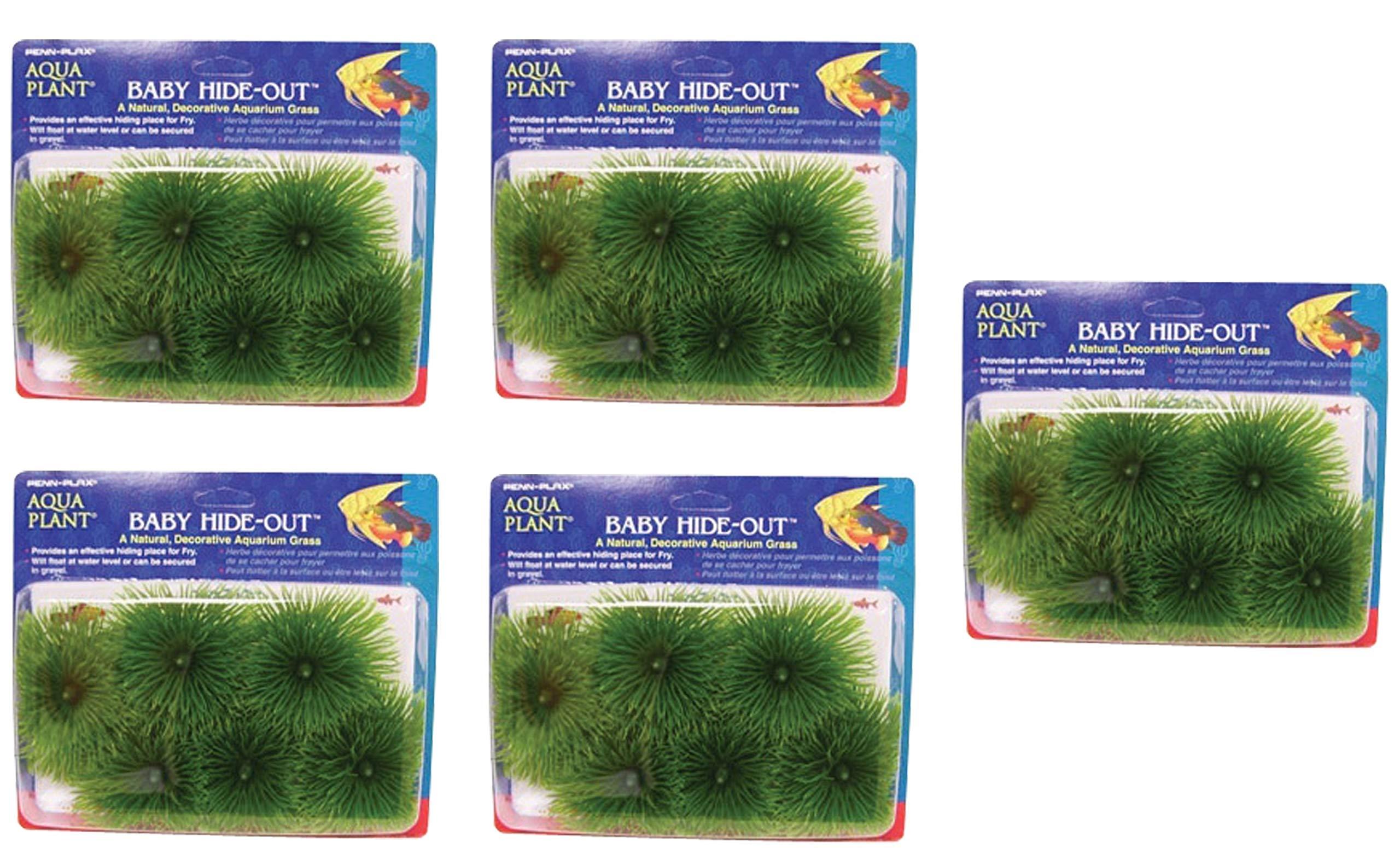 Penn Plax Fish Breeding Grass - Baby Hideout, Safe Hiding for Fry - Decorative Aquarium Grass (Fіvе Расk) by Penn Plax
