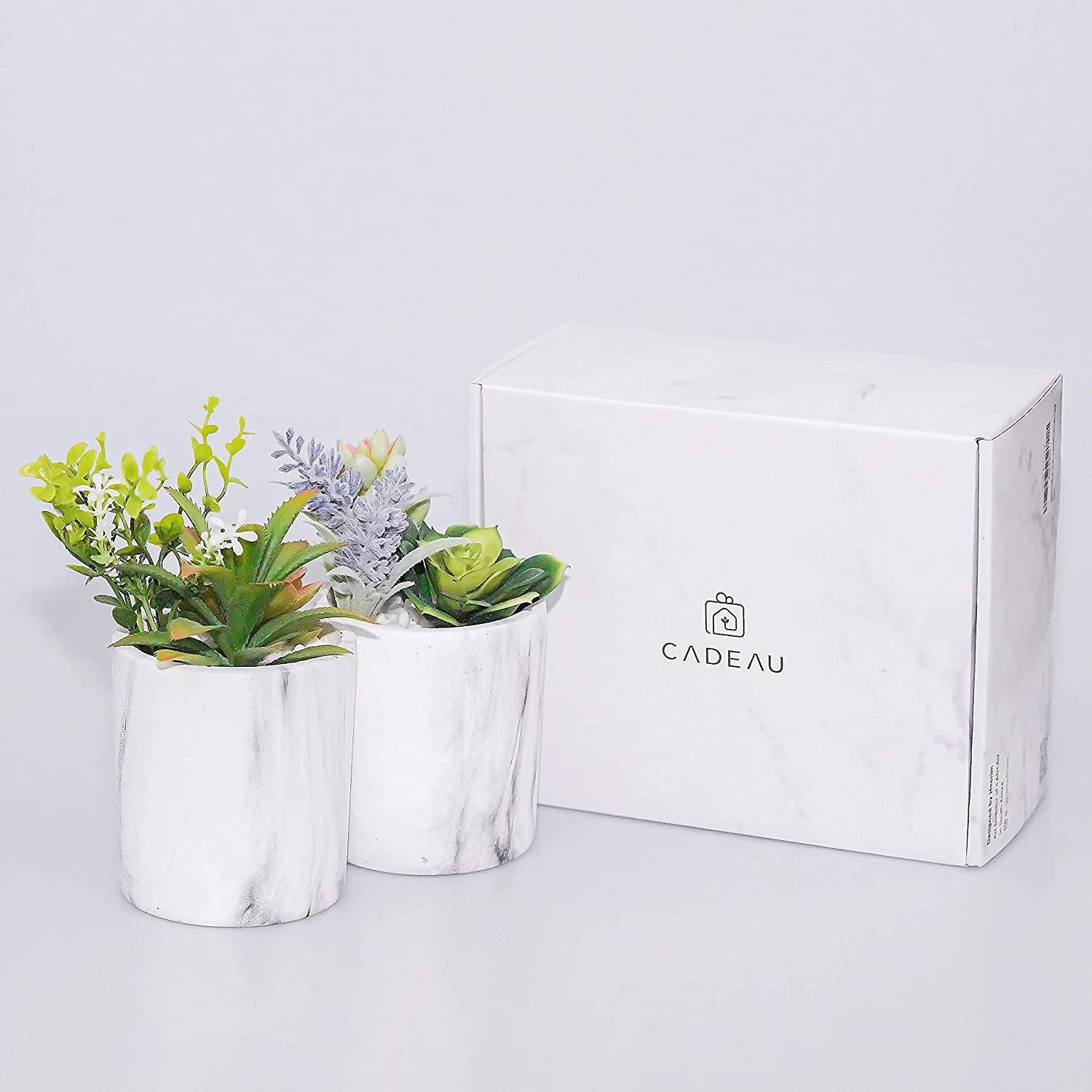 Cadeau Artificial Succulents 6 Aesthetic Fake Faux Succulents In 2 Pots Faux Plants For Room Decoration Indoor Plants For Greenery Decor In Dorm Office Dining Table Bedroom Kitchen Bookshelf