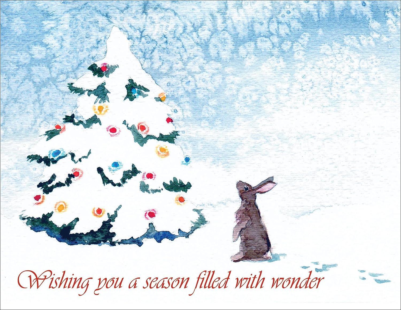 Amazon.com : Hoppy Holidays - Christmas Holiday Greeting Cards ...