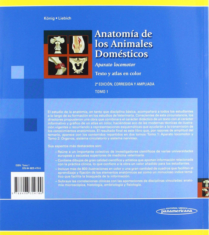 König. Anatomía de los Animales Domésticos.Texto y atlas en Color 1 ...