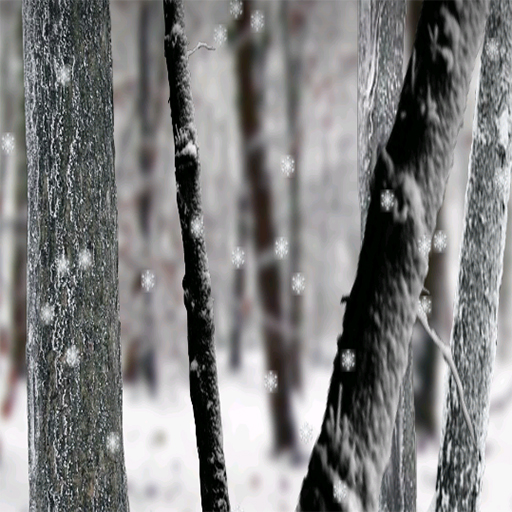 Snow Live Wallpaper: Amazon.com: Snow Forest Live Wallpaper Free: Appstore For