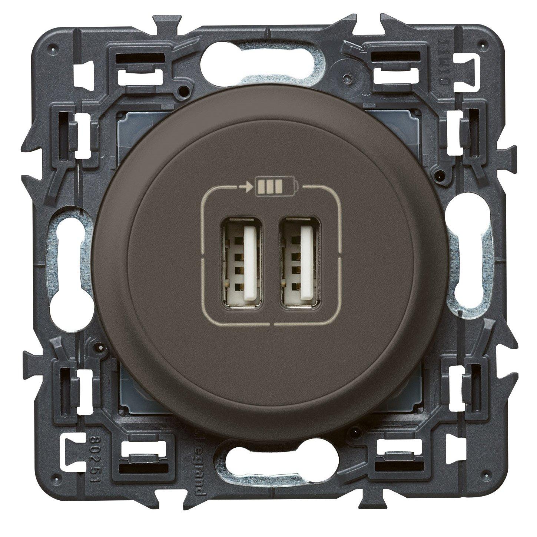Legrand 099786 Cé liane Prise double USB, 240 V, Titane Appareillage celiane va et vient interrupteur tv rj45 poussoir variateur telephone vmc volet roulant radio thermostat câble etanche carillon obturateur