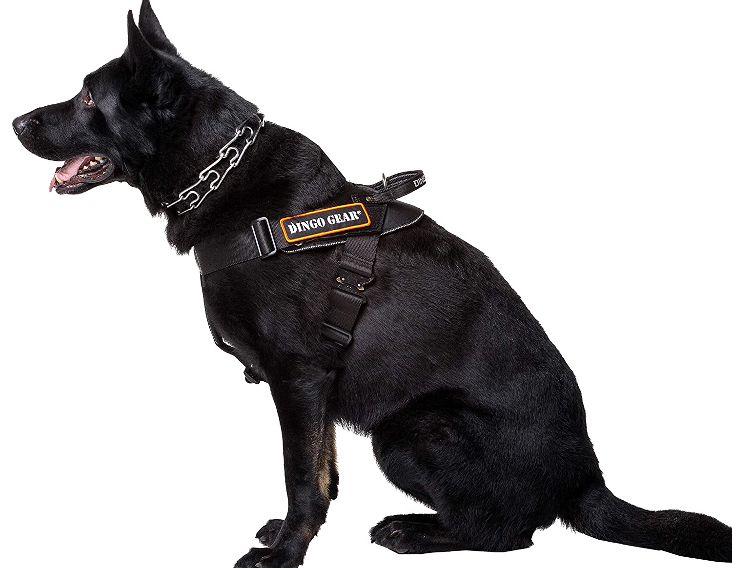 XL DINGO GEAR Multifunctional Harness For Dog In Work, Guard Dog Training, K9 and Ipo, Cobra System Handmade Black S03197, XL