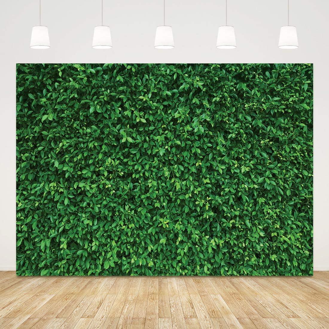 Grüner Künstlicher Gras Hintergrund Für Party Rasen Kamera