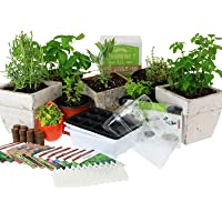 Culinary Indoor Herb Garden Starter Kit - Herb Seeds - 12 Non-GMO Varieties - Grow Cooking Herbs & Spices - Seeds: Cilantro, Arugula, Thyme, Sage, Chives, Dill, Basil, More