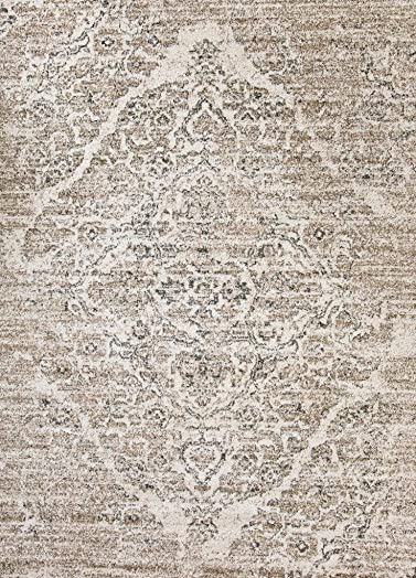 4620 Distressed Beige 8x10 Area Rug Carpet Large New