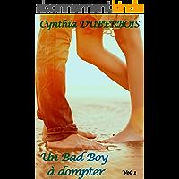 Un Bad Boy à dompter: Volume 1 (New Romance, Erotisme, Humour) (Coeurs en feu t. 3)