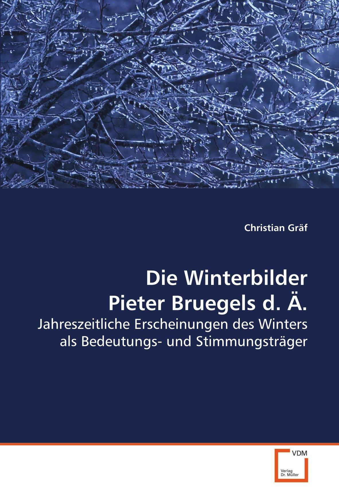 Die Winterbilder Pieter Bruegels d. Ä.: Jahreszeitliche Erscheinungen des Winters als Bedeutungs- und Stimmungsträger (German Edition) PDF