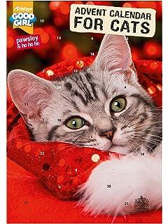cat advent calendar 2020