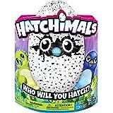 Hatchimals 6028895 - Uovo Interattivo Hatchimals, Draggles