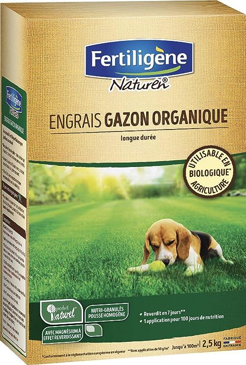 NATUREN – Abono césped Beige/Verde 18, 5 x 8, 8 x 30 cm natgaz1 C: Amazon.es: Jardín
