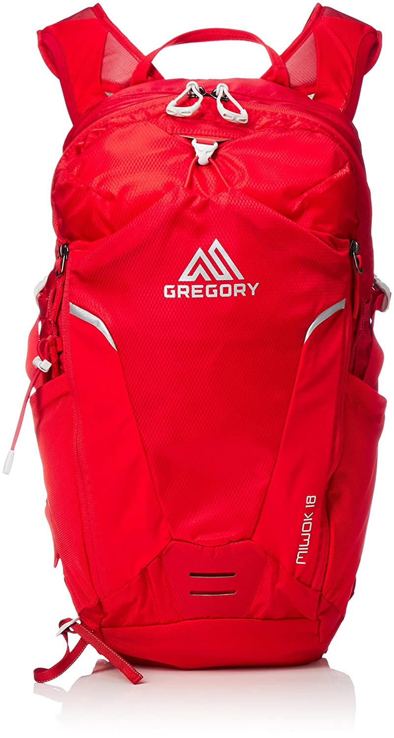 Gregory Mountain Products Miwok 18 Liter Men's Daypack, Citrus Red, One Size 68380-5585