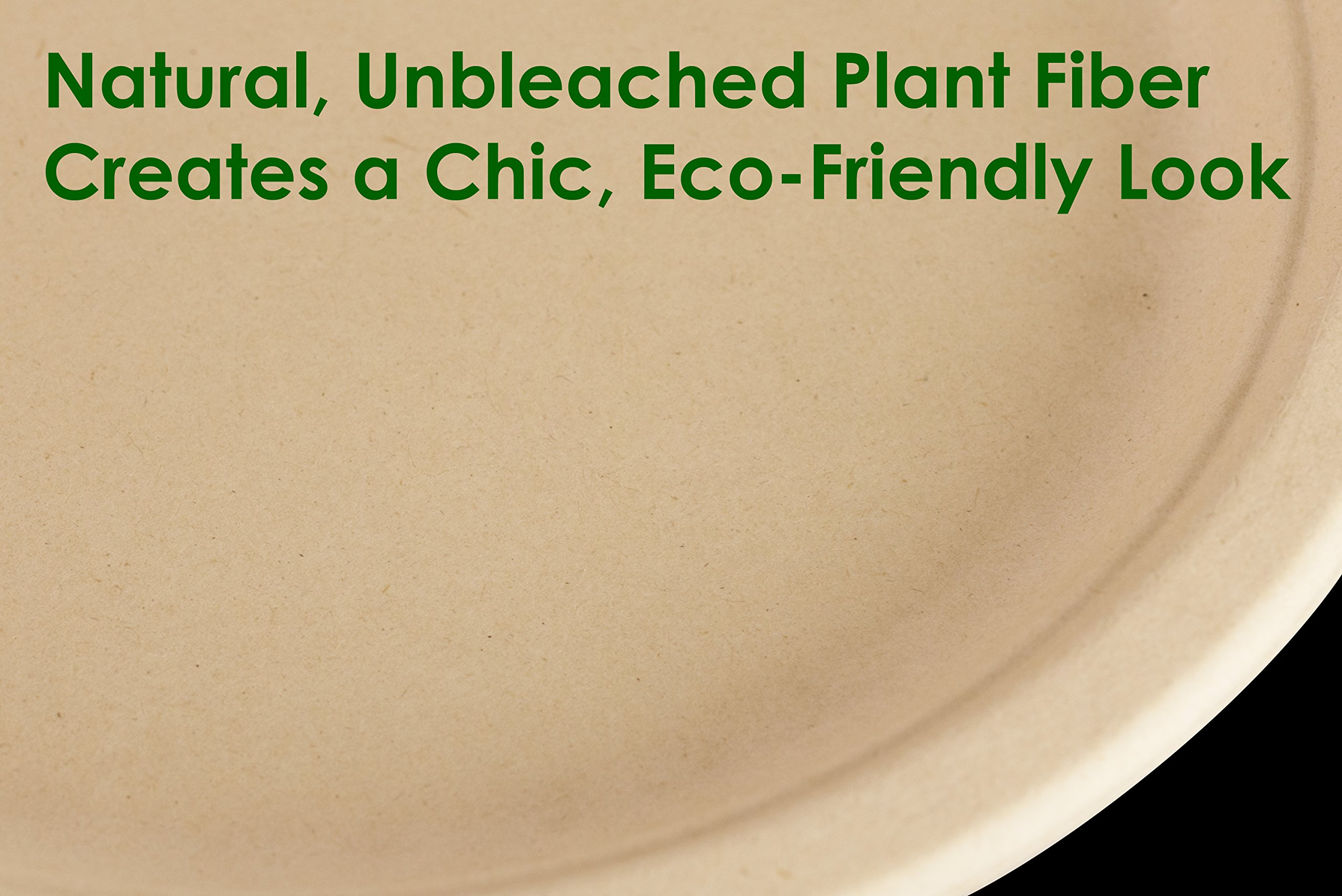 Biodegradable, Plant-Based, Tree Free, Disposable 9 Inch Plates 50 Pack. Sturdy, Gluten Free Wheatstraw Fiber is Certified Compostable, Eco-Friendly, Microwavable and Safe for Hot and Cold Foods by Avant Grub (Image #2)